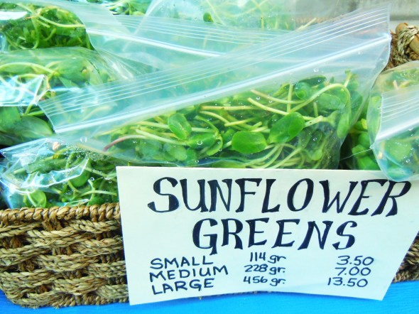 sunflower greens and sprouts by Essa Sprouts at Wychwood Barns farmers' market