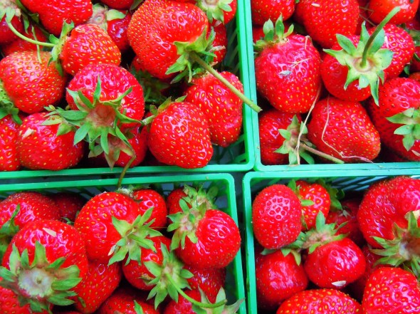 summer strawberries at Junction farmers market